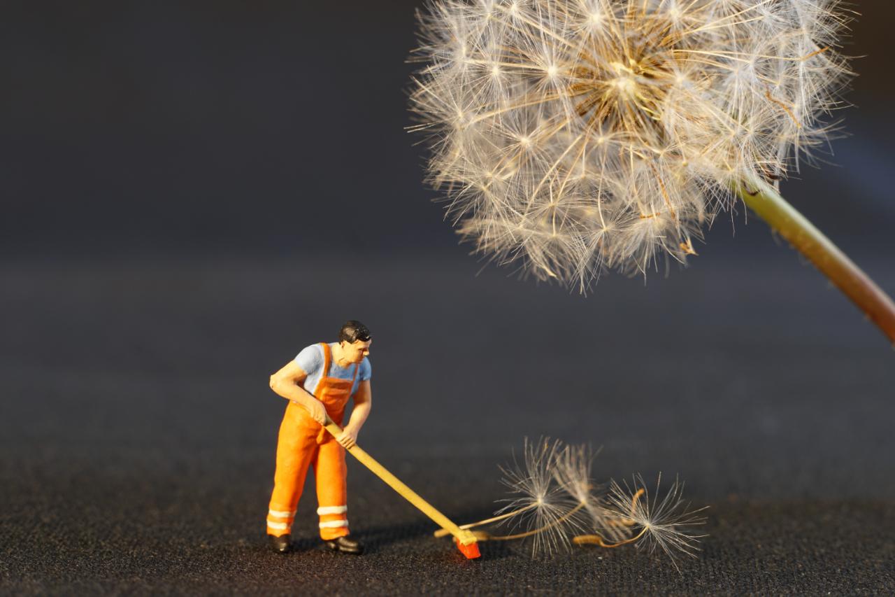 Професионално почистване - предимства и недостатъци